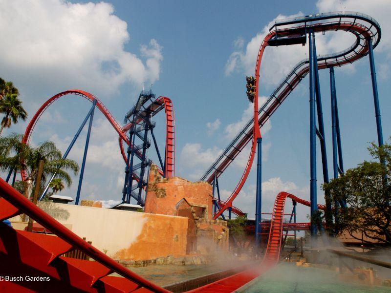 SheiKra3 - Busch Gardens Tampa Horario De Funcionamento